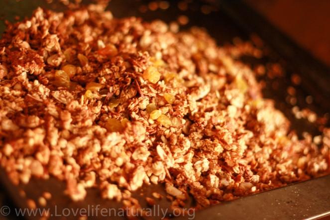 apple coconut granola
