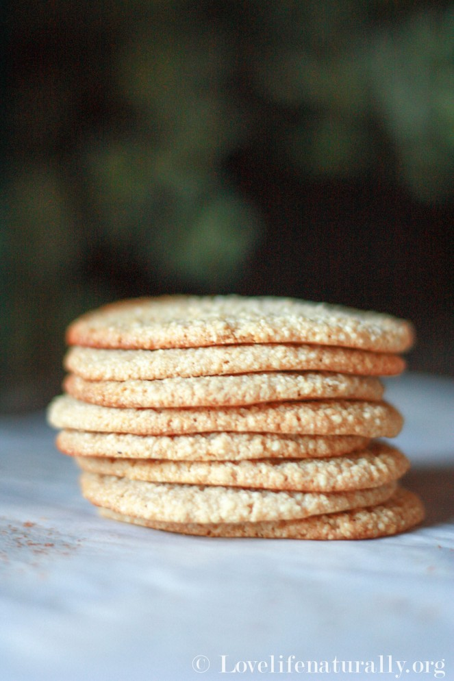 no sugar cookies