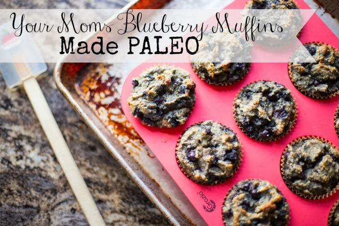muffins-blueberry